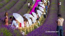 Photo hebdo : la canicule en France, le climat au G20 et une procession philippine... L'actualité de la semaine en images