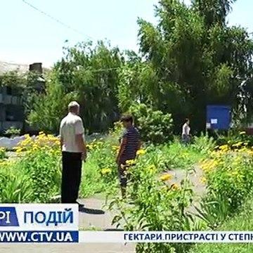 Гектари пристрасті у с.Степку Андрушівського району