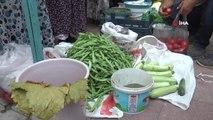 Bu pazarda her şey organik