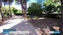 Canicule : Carpentras bat un record de chaleur