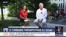 Le cannabis thérapeutique à l'essai ?