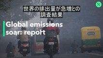 世界の炭素排出量が急増