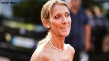 Céline Dion ose la robe totalement transparente