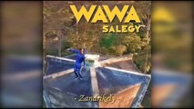 Wawa Salegy - Zandrikely - audio