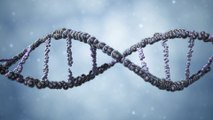 Ancient Aliens: Alien Messages in Our DNA
