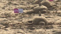 Taiwan sets new Guinness world record with 287 sand dolphins