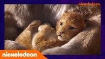 L'actualité Fresh   Semaine du 01 au 07 Juillet 2019   Nickelodeon France