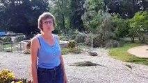A Frontenex (Savoie), le vent a ravagé le parc de la mairie