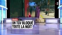Des passagers bloqués toute la nuit dans un TGV Paris-Grenoble à cause des orages