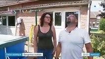 Frelon asiatique : invasion du dangereux insecte en France