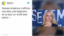 Pour son anniversaire, Pamela Anderson demande la libération d'une orque