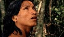 El canto de la selva - Trailer subtitulado en español (HD)
