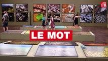 L'instant suspendu - Yann Arthus-Bertrand