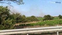 Le Cap d'Agde - Plusieurs départs de feu dans la zone naturelle du Bagnas - 2 juillet 2019