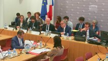 Comité d'évaluation et de contrôle : M. Gilles de Margerie, Commissaire général de France Stratégie - Mardi 2 juillet 2019