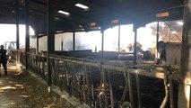 Quimper. Un hangar agricole détruit par le feu