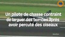 Un pilote de chasse contraint de larguer des bombes après avoir percuté des oiseaux