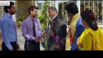 Jhootha Kahin Ka - Trailer _Rishi K, Jimmy S,Sunny S,Omkar K _ YoYo Honey Singh,