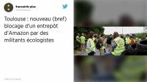 Toulouse. Nouveau blocage d'Amazon par des militants écologistes