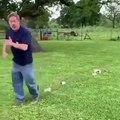 Regardez cet homme qui fait une bonne balade avec ses chatons !