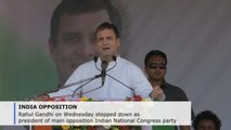 Rahul Gandhi quits as leader of India's opposition Congress