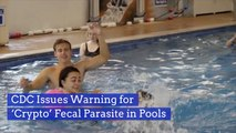 Watch Out For This Pool Parasite