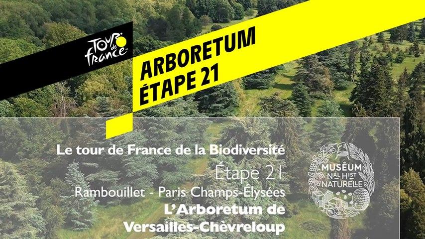 Étape 21 : L'Arboretum de Versailles-Chèvreloup