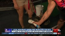 Pet Matchmaker offers free microchips for pets
