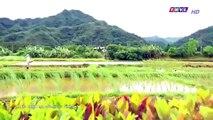 Đại Thời Đại Tập 97 - đại thời đại tập 98 - Phim Đài Loan - THVL1 Lồng Tiếng - Phim Dai Thoi Dai Tap 97