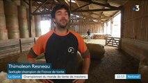 Haute-Vienne : six Français visent le titre de champion du monde dela tonte de moutons