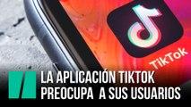 La aplicación TikTok preocupa a sus usuarios