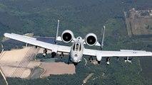 Bombs Away? Bird Strike Makes Fighter Jet Drop Three Dummy Bombs On Sunny Fla
