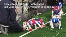 Roboterfußball-Weltmeisterschaft in Sydney