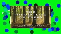 The Hidden Life of Trees: The Illustrated Edition  For Kindle