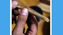 Et si la légalisation du cannabis était testée à Paris ?