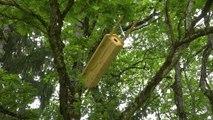 Programme Golf pour la Biodiversité : à Esery, l'entretien préserve les espèces