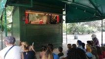 Bruxelles : Spectacle Guignolet au parc Royal
