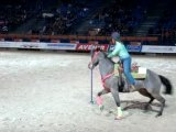 CHEVAL PASSION POLE BENDING
