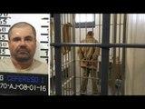Juez concede extradición del 'Chapo' Guzmán a EU