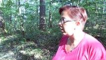 À la découverte de la Forêt de Lespinasse