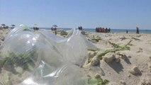 Más cerca de encontrar una alternativa biodegradable al plástico