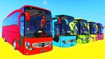 Dessin Animé avec Voitures Colorées - Bus pour Enfants - Vidéo éducative Français