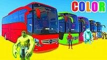 Comptines Bébé - Dessin Animé pour Enfant avec Bus et Voitures Colorées