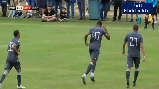 1-0 Chuba Akpom AMAZING Goal - PAOK 1-0 FC Nordsjaelland 06.07.2019
