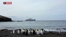 L'Unesco inscrit les Terres et mers australes françaises au patrimoine mondial