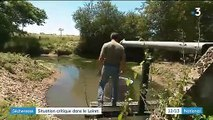 Dans le Loiret, les agriculteurs souffrent de la sécheresse