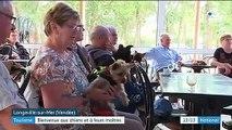 Le Toutourisme ou comment valoriser l'accueil des vacanciers avec leur animal de compagnie