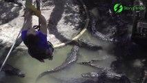 Cette tyrolienne passe au dessus des crocodiles... Terrifiant