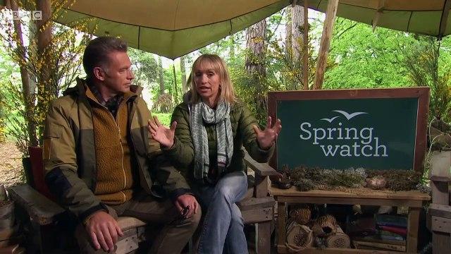BBC Springwatch Wild in the Garden