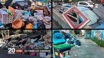 Les ordures s'accumulent dans les rues de Rome ... et les sangliers fouillent les poubelles en pleine ville ! - VIDEO